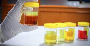 fake urine for drug test