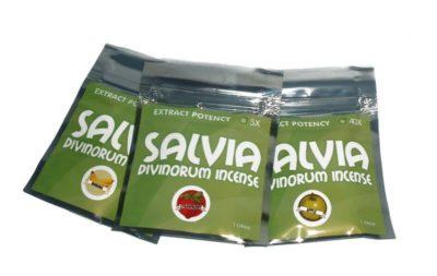 salvia divinorum for sale
