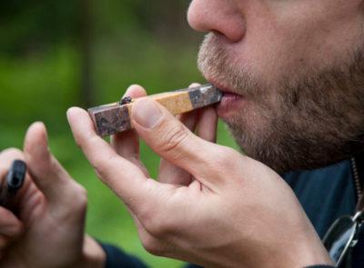 Smoking salvia divinorum