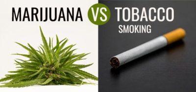 weed vs smoking