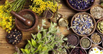 Legal High Herbs
