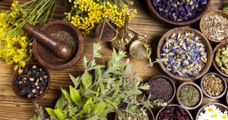 Top 5 Legal High Herbs