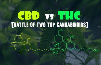 CBD for marijuana withdrawal treatment