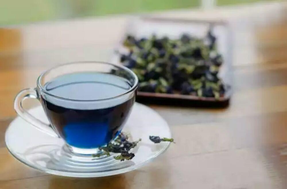 Palo Azul Drug Test Method: Can You Detox With Azul Tea?