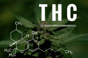 marijuana detox kit